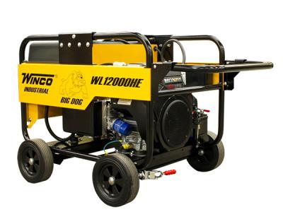 WL12000HE Generator